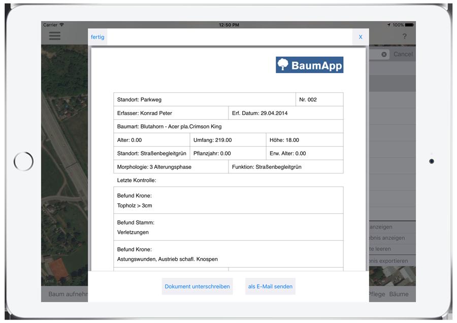 screenshot_treereport